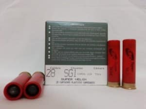 28-sg-350x262
