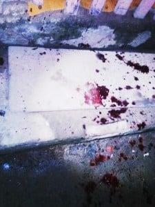 As marcas de sangue foram encontradas por todo local do quintal.