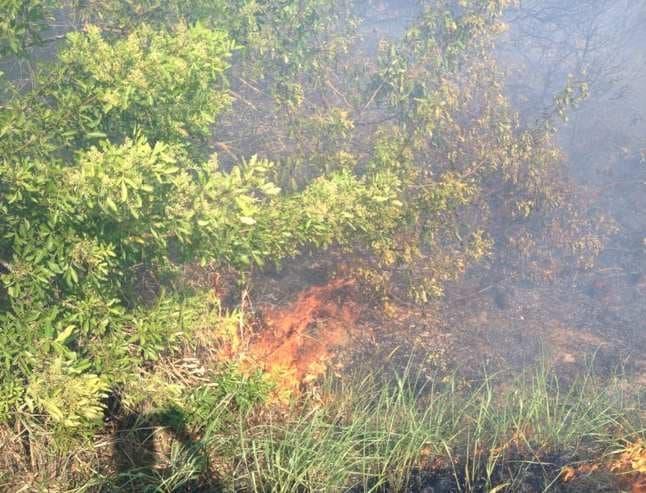 Segundo informações de funcionários da Rodosol, o incêndio teria sido provocado por um morador que havia decidido colocar fogo no lixo da residência.
