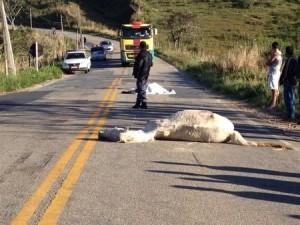 Com o impacto Douglas e o animal morreram na hora.
