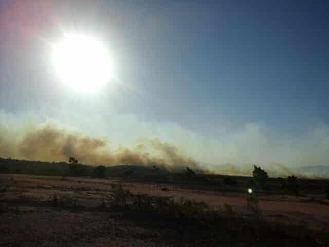 As chamas atingiram uma grande área de vegetação. Foto: Divulgação