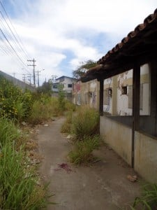 O mato tomou conta do pátio e serve de esconderijo. Foto: João Thomazelli/Portal 27