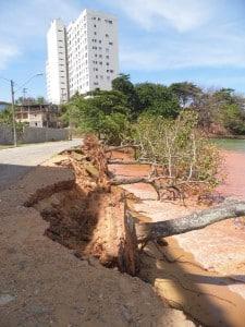 Na semana passada a prefeitura apontou o risco da queda das árvores. foto: João Thomazelli/Portal 27