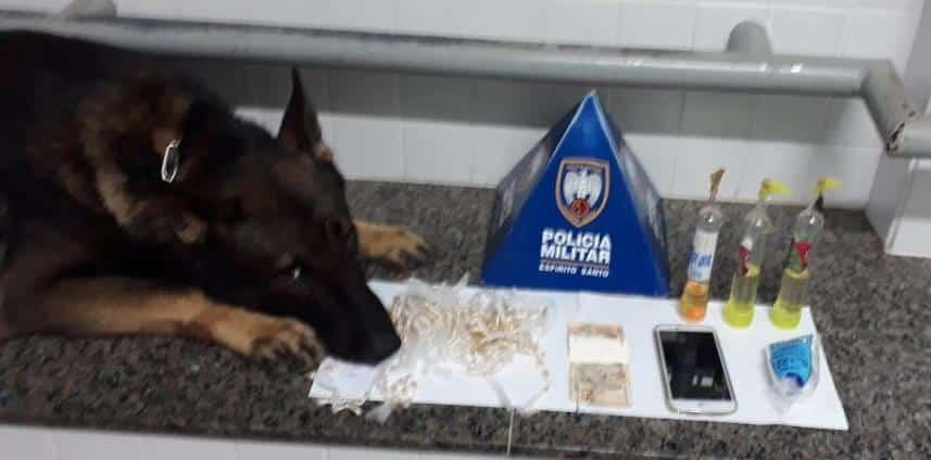cão policial myke